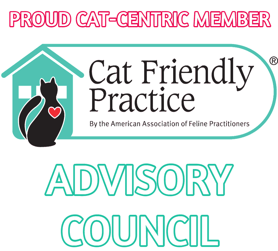 Cat Friendly Practice Advisory Council